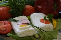 Eggcheese neúdený 11